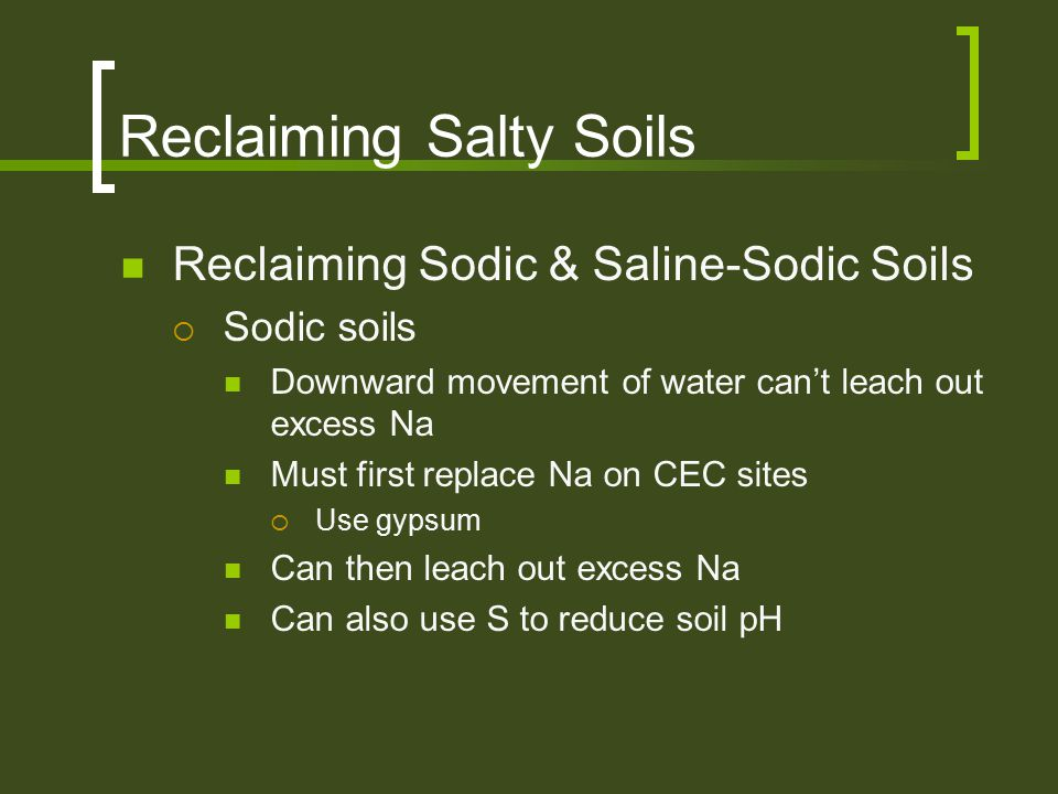 Reclaiming Salty Soils Reclaiming Sodic & Saline-Sodic Soils  Sodic soils Downward movement of water can't leach out excess Na Must first replace Na