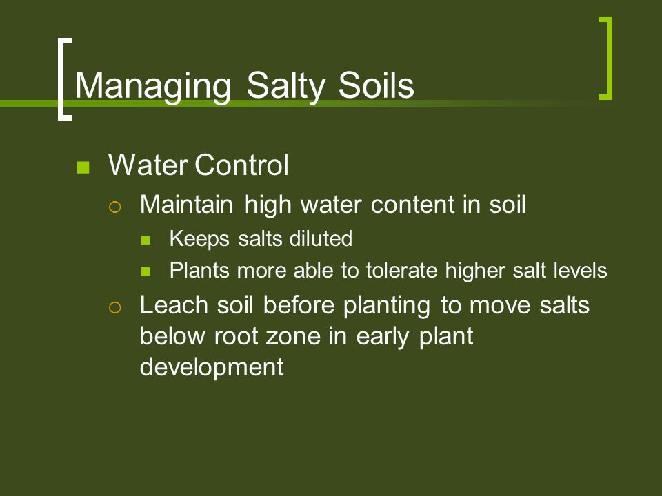Managing Salty Soils Water Control  Maintain high water content in soil Keeps salts diluted Plants more able to tolerate higher salt levels  Leach s