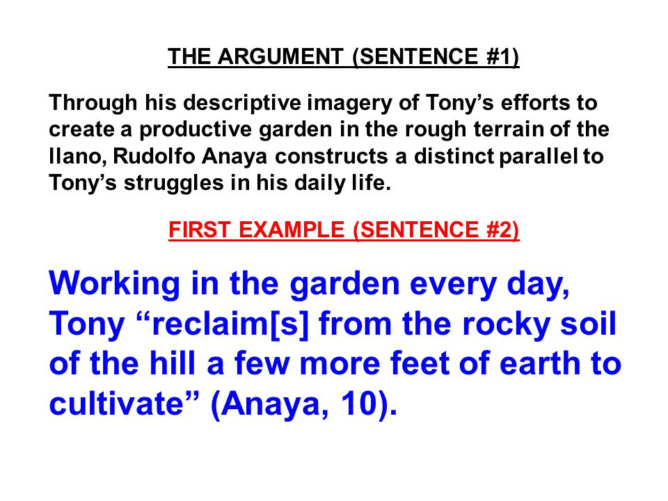 THE ARGUMENT (SENTENCE #1) Through his descriptive imagery of Tony's efforts to create a productive garden in the rough terrain of the llano, Rudolfo