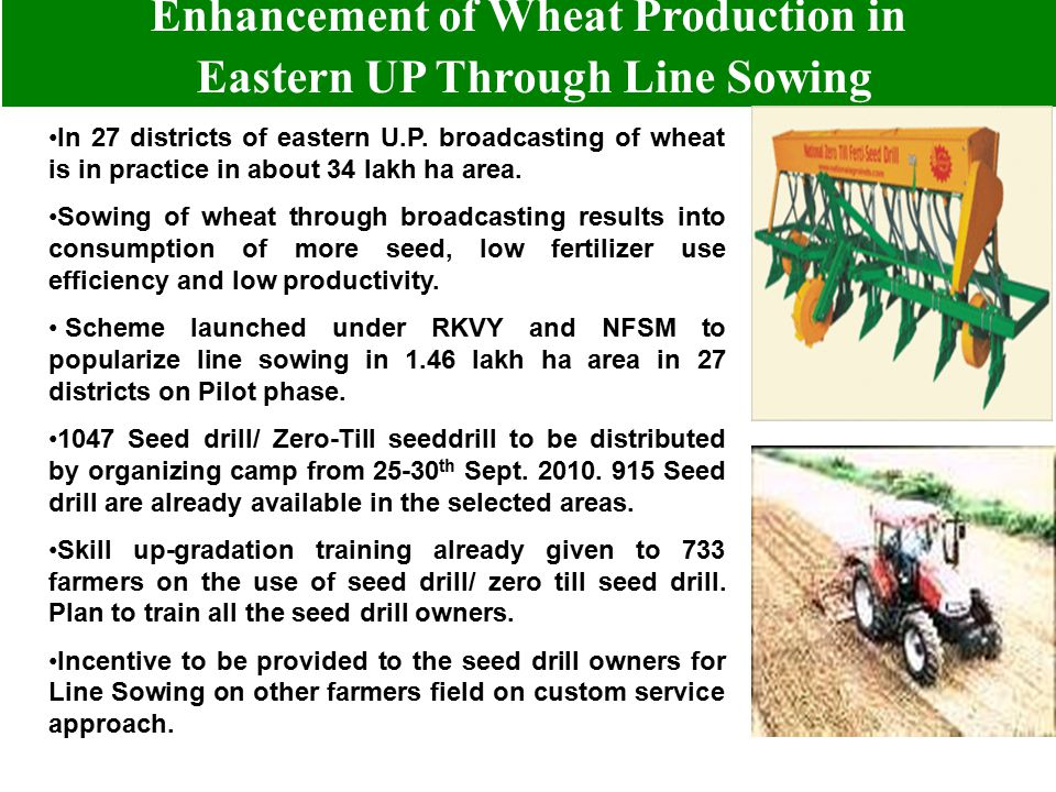 Enhancement of Wheat Production in Eastern UP Through Line Sowing In 27 districts of eastern U.P. broadcasting of wheat is in practice in about 34 lak