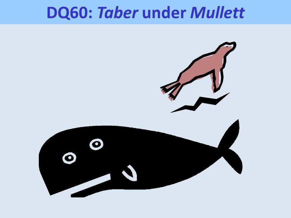 DQ60: Taber under Mullett