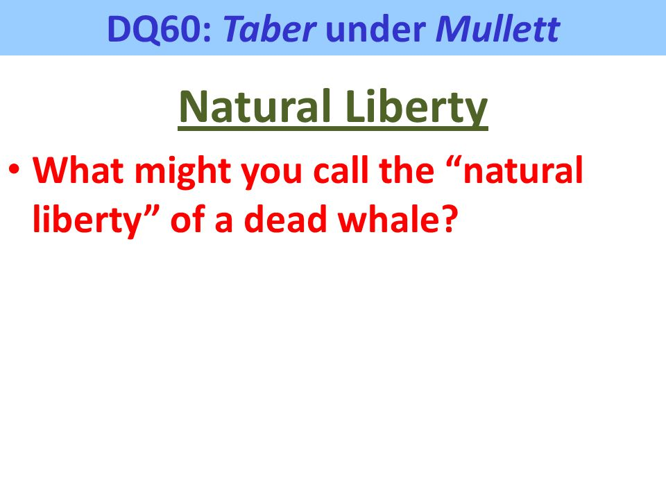 "DQ60: Taber under Mullett Natural Liberty What might you call the ""natural liberty"" of a dead whale?"