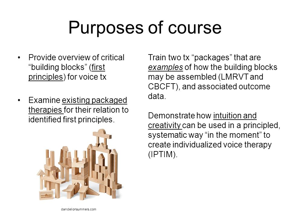 """Purposes of course Provide overview of critical """"building blocks"""" (first principles) for voice tx Examine existing packaged therapies for their relati"""