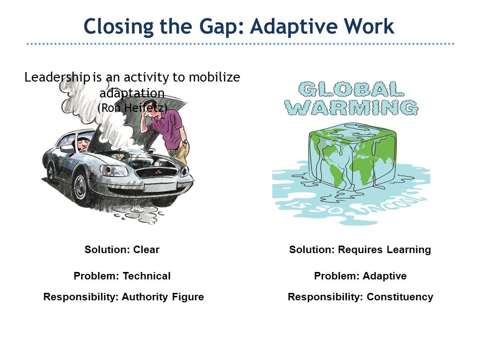 Work Avoidance People fail to adapt because of the stress provoked by the problems and the changes it demands.