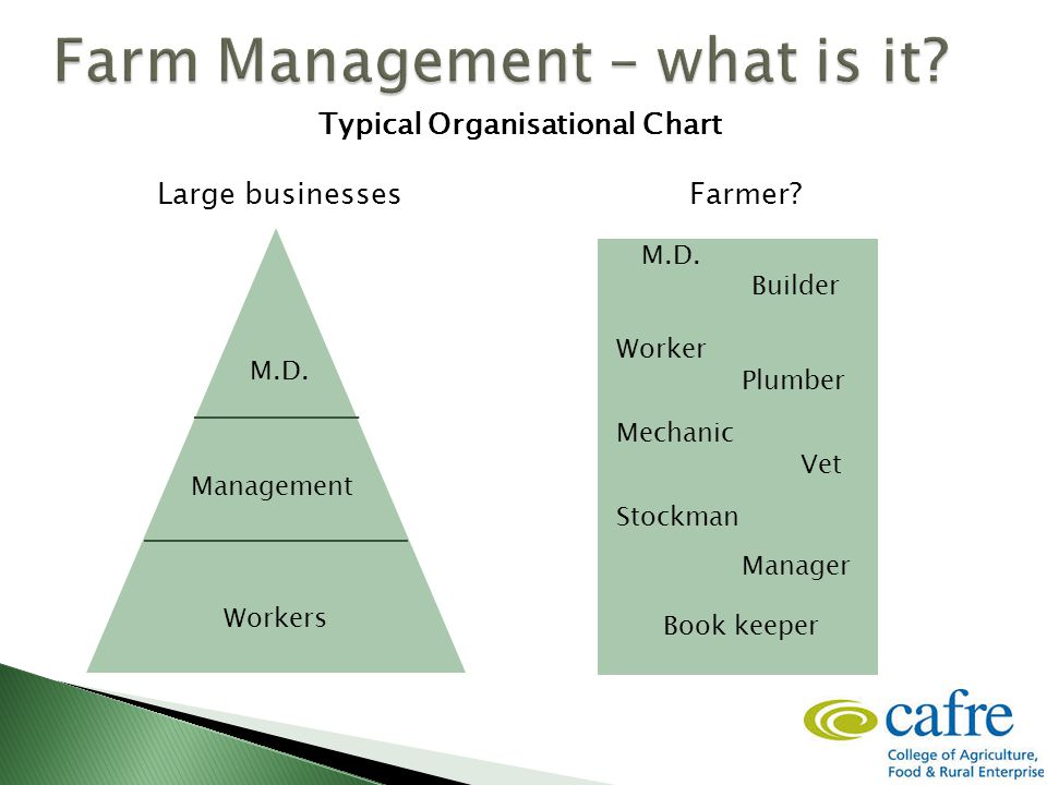 Workers Management M.D. Typical Organisational Chart Large businesses Farmer.