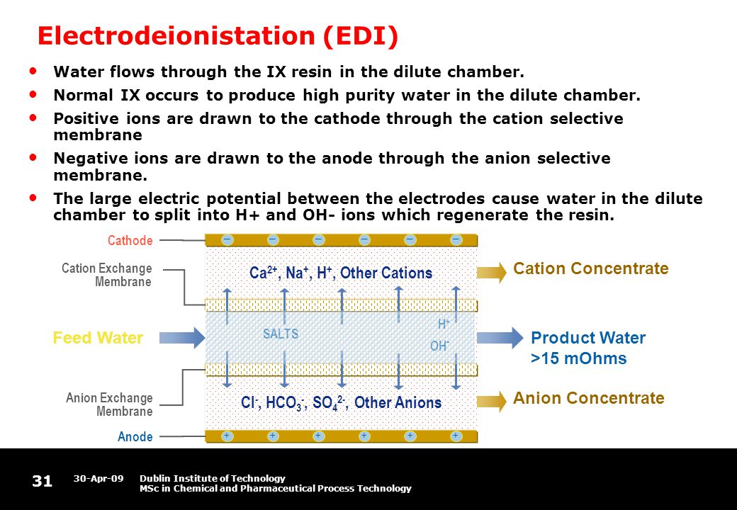 31 30-Apr-09Dublin Institute of Technology MSc in Chemical and Pharmaceutical Process Technology Electrodeionistation (EDI) Cl -, HCO 3 -, SO 4 2-, Other Anions Ca 2+, Na +, H +, Other Cations Feed Water –––––– ++++++ Product Water >15 mOhms Cation Concentrate Anion Concentrate Cathode Anion Exchange Membrane Anode SALTS H + OH - Cation Exchange Membrane Water flows through the IX resin in the dilute chamber.