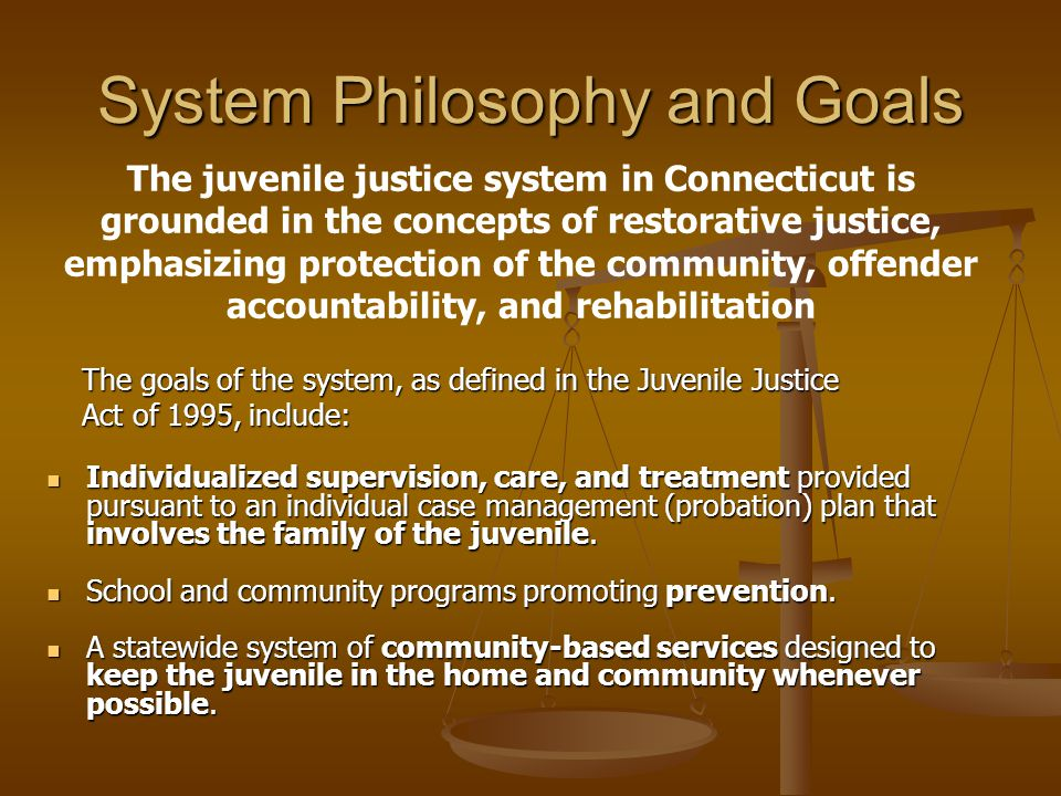System Philosophy and Goals Individualized supervision, care, and treatment provided pursuant to an individual case management (probation) plan that involves the family of the juvenile.