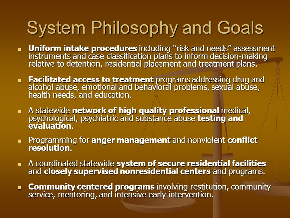 System Philosophy and Goals Uniform intake procedures including risk and needs assessment instruments and case classification plans to inform decision-making relative to detention, residential placement and treatment plans.