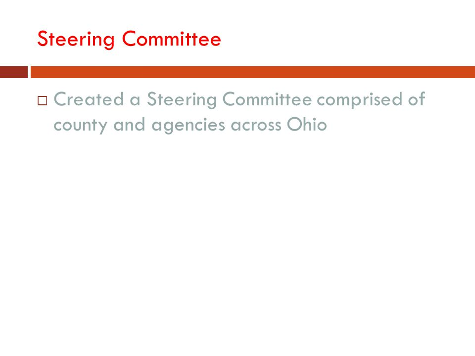 Steering Committee  Created a Steering Committee comprised of county and agencies across Ohio