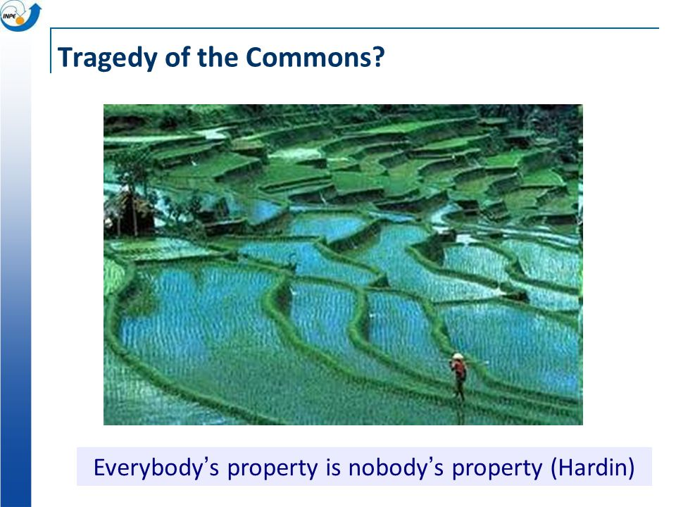 Tragedy of the Commons Everybody ' s property is nobody ' s property (Hardin)