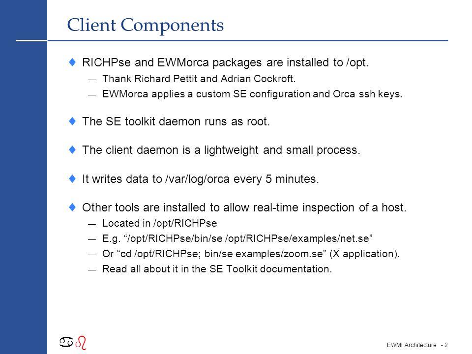 - 12 abab EWMI Architecture Orca – TCP Transfer Rate  Remember that EWMI has: — Both gigabit and 100 Meg interfaces.