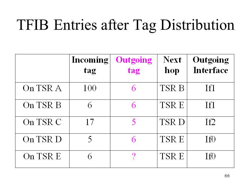 65 Initial TFIB Entries