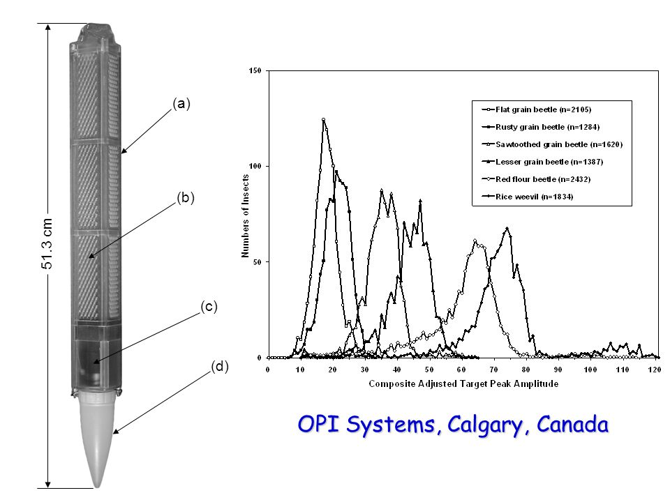 (a) (b) (c) (d) 51.3 cm OPI Systems, Calgary, Canada