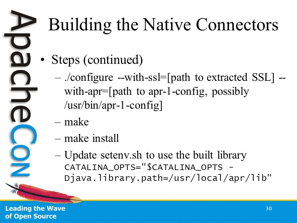 Building the Native Connectors Steps (continued) –./configure --with-ssl=[path to extracted SSL] -- with-apr=[path to apr-1-config, possibly /usr/bin/apr-1-config] –make –make install –Update setenv.sh to use the built library CATALINA_OPTS= $CATALINA_OPTS - Djava.library.path=/usr/local/apr/lib 30