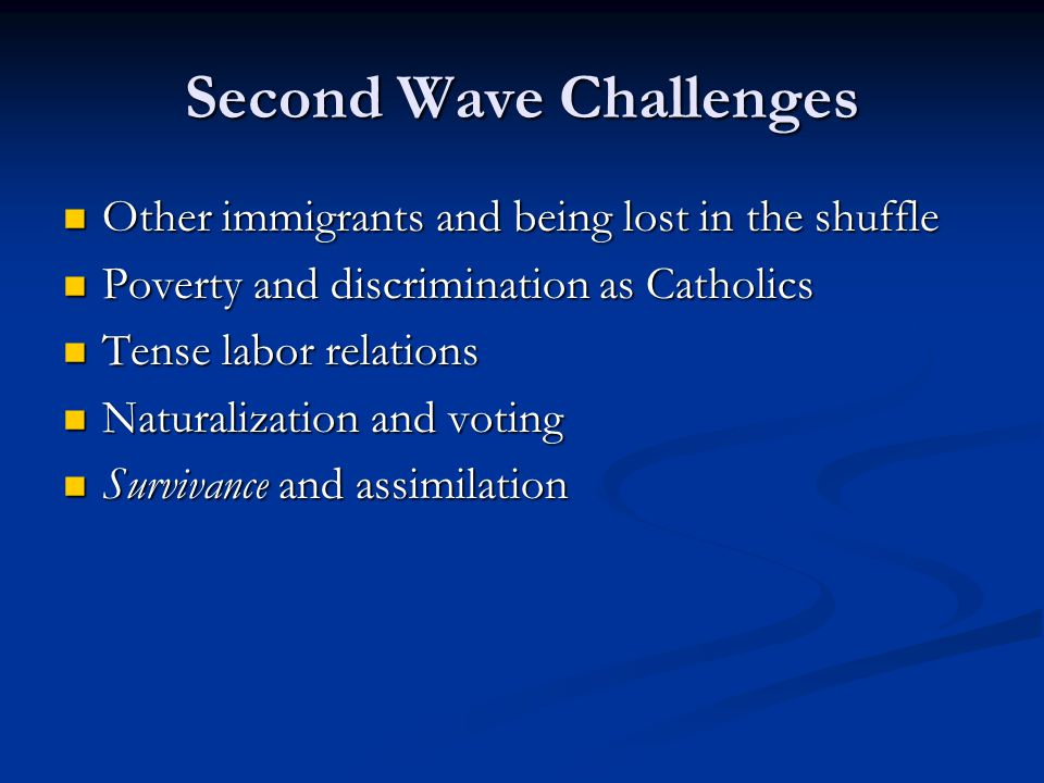 Second Wave Challenges Other immigrants and being lost in the shuffle Other immigrants and being lost in the shuffle Poverty and discrimination as Cat