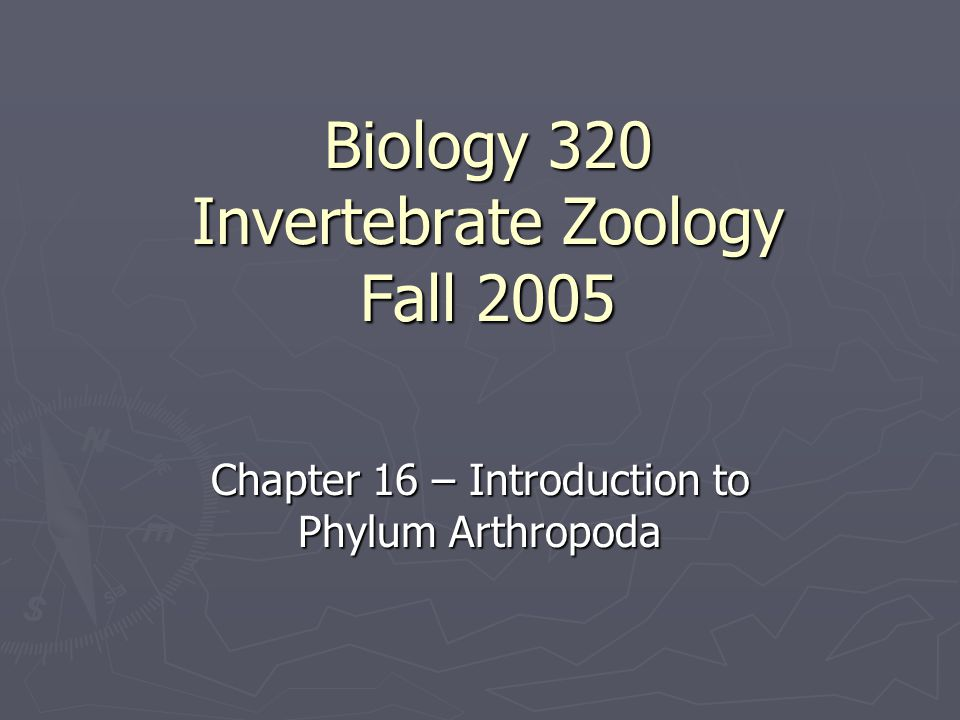Biology 320 Invertebrate Zoology Fall 2005 Chapter 16 – Introduction to Phylum Arthropoda