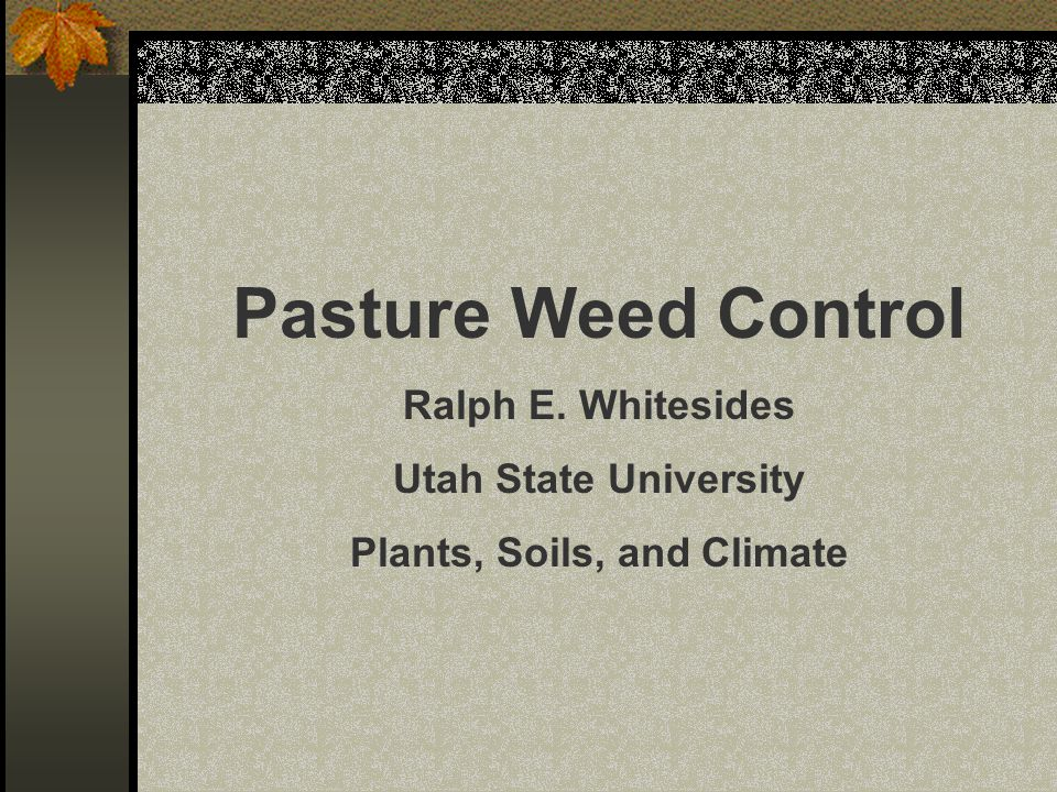 Pasture Weed Control Ralph E. Whitesides Utah State University Plants, Soils, and Climate