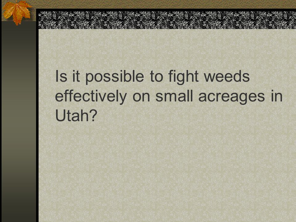 Is it possible to fight weeds effectively on small acreages in Utah