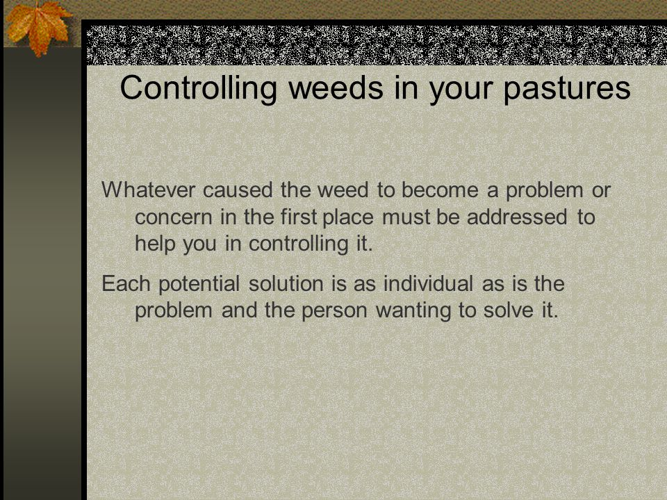 Controlling weeds in your pastures Whatever caused the weed to become a problem or concern in the first place must be addressed to help you in controlling it.