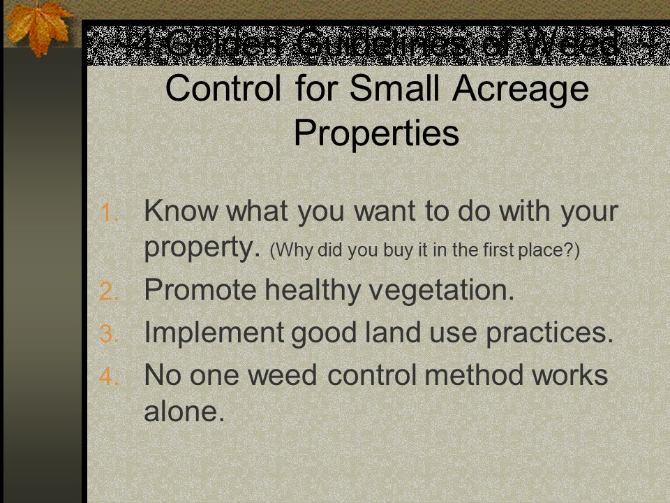 4 Golden Guidelines of Weed Control for Small Acreage Properties 1.