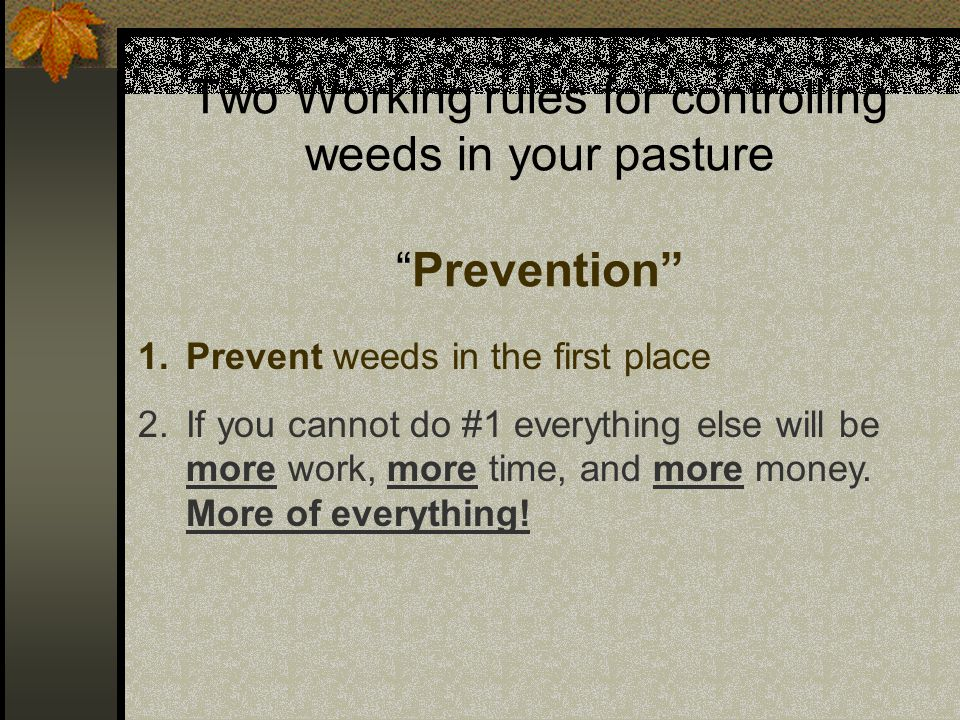 Controlling weeds in your pasture These may be more realistic.