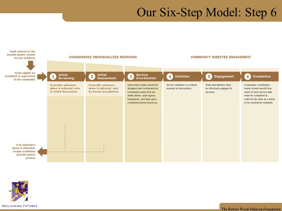 The Robert Wood Johnson Foundation Our Six-Step Model: Step 6