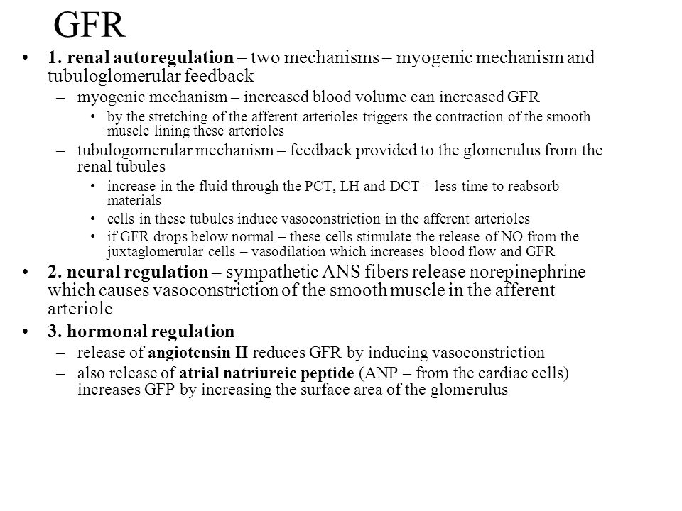 GFR 1. renal autoregulation – two mechanisms – myogenic mechanism and tubuloglomerular feedback –myogenic mechanism – increased blood volume can incre