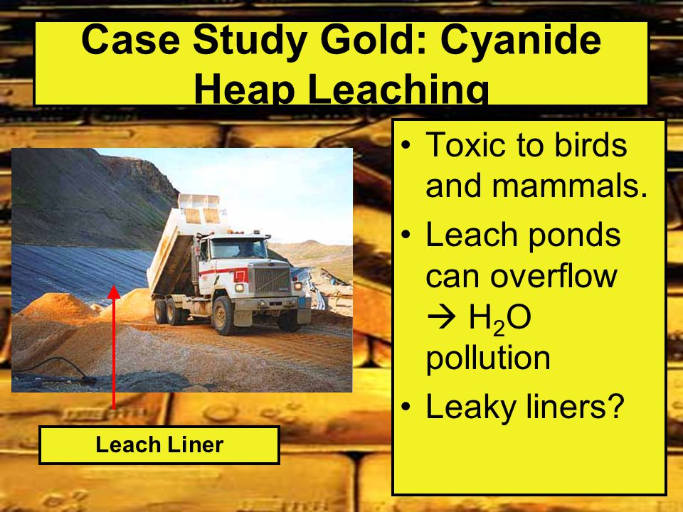 Case Study Gold: Cyanide Heap Leaching Toxic to birds and mammals.