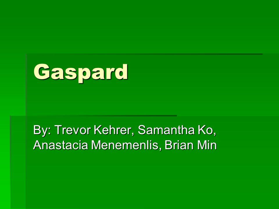 Gaspard By: Trevor Kehrer, Samantha Ko, Anastacia Menemenlis, Brian Min