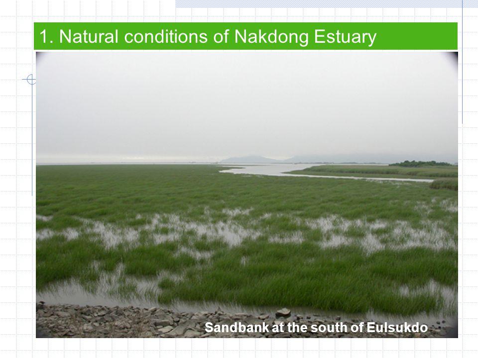 Jinwoodo Eulsukdo Noksan sandbank Myungji sandbank Myung geum Meori Doyodeung 1.Natural conditions of Nakdong Estuary – The View of Estuary Shinjado