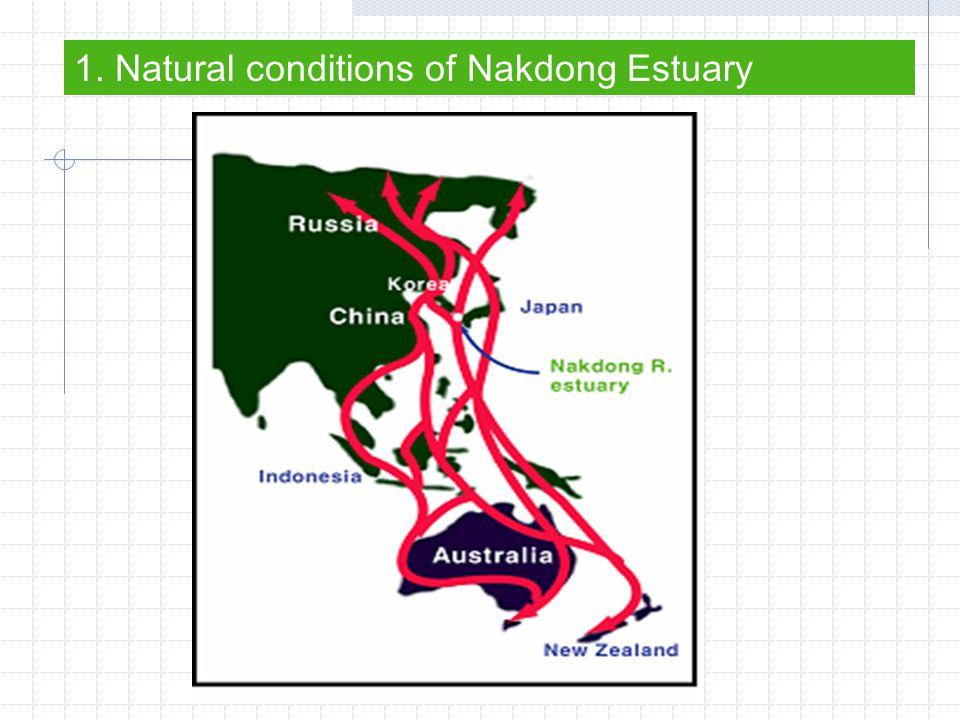 Sandbank at the south of Eulsukdo 1. Natural conditions of Nakdong Estuary