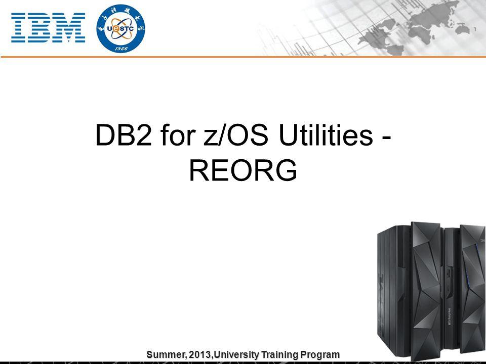 Summer, 2013,University Training Program DB2 for z/OS Utilities - REORG
