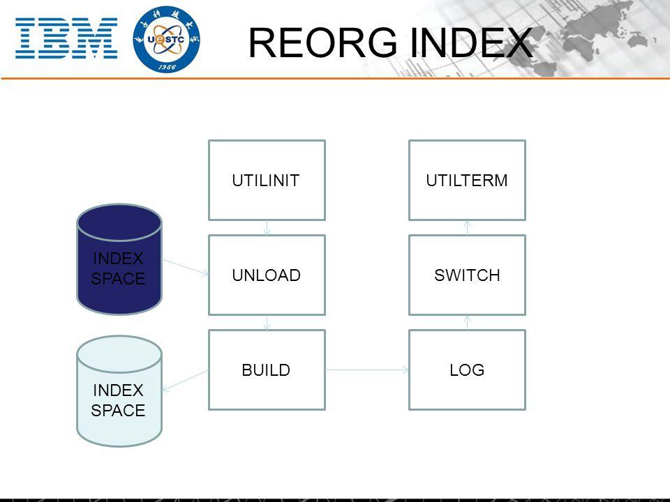 REORG INDEX INDEX SPACE UNLOAD BUILD INDEX SPACE SWITCH LOG UTILINITUTILTERM