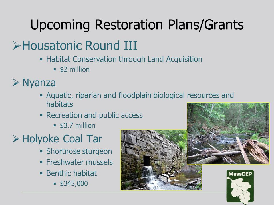 Upcoming Restoration Plans/Grants  Housatonic Round III  Habitat Conservation through Land Acquisition  $2 million  Nyanza  Aquatic, riparian and floodplain biological resources and habitats  Recreation and public access  $3.7 million  Holyoke Coal Tar  Shortnose sturgeon  Freshwater mussels  Benthic habitat  $345,000