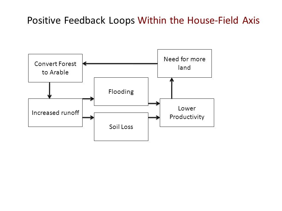 Positive Feedback Loops Within the House-Field Axis Convert Forest to Arable Increased runoff Soil Loss Flooding Lower Productivity Need for more land