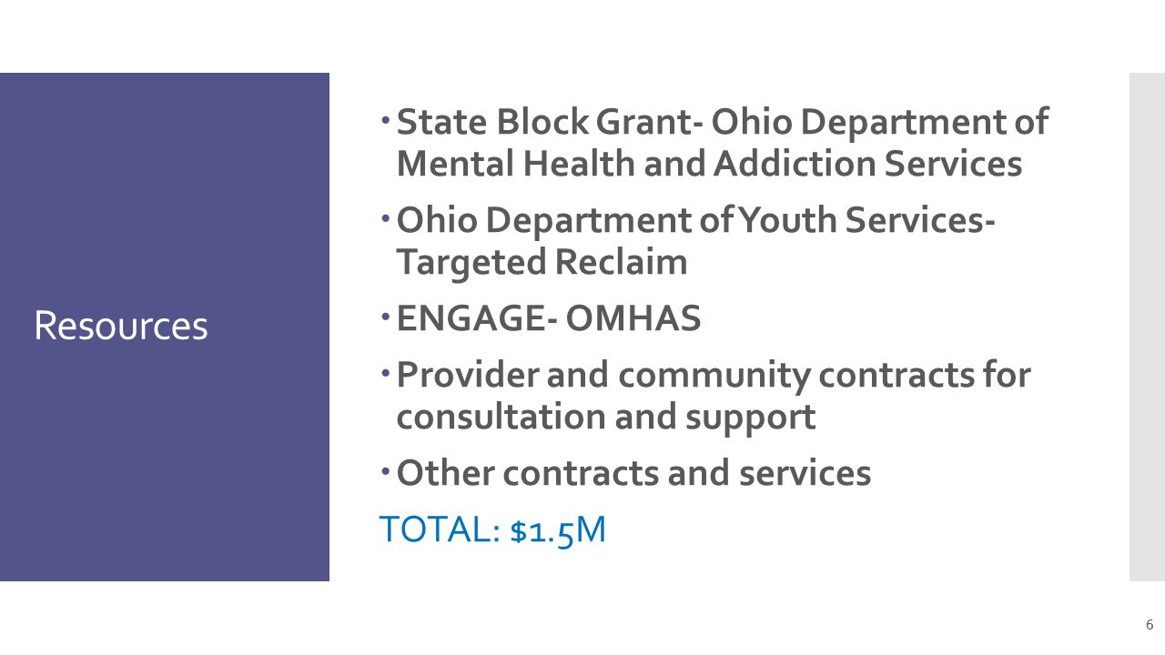Resources  State Block Grant- Ohio Department of Mental Health and Addiction Services  Ohio Department of Youth Services- Targeted Reclaim  ENGAGE- OMHAS  Provider and community contracts for consultation and support  Other contracts and services TOTAL: $1.5M 6