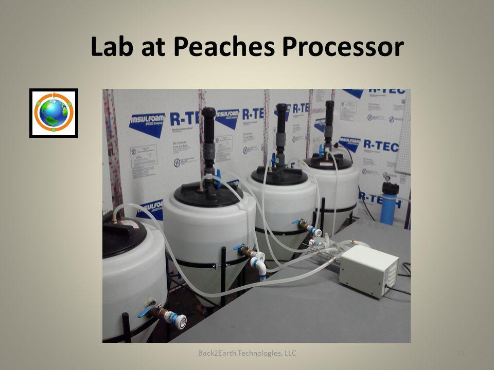 Lab at Peaches Processor Back2Earth Technologies, LLC19