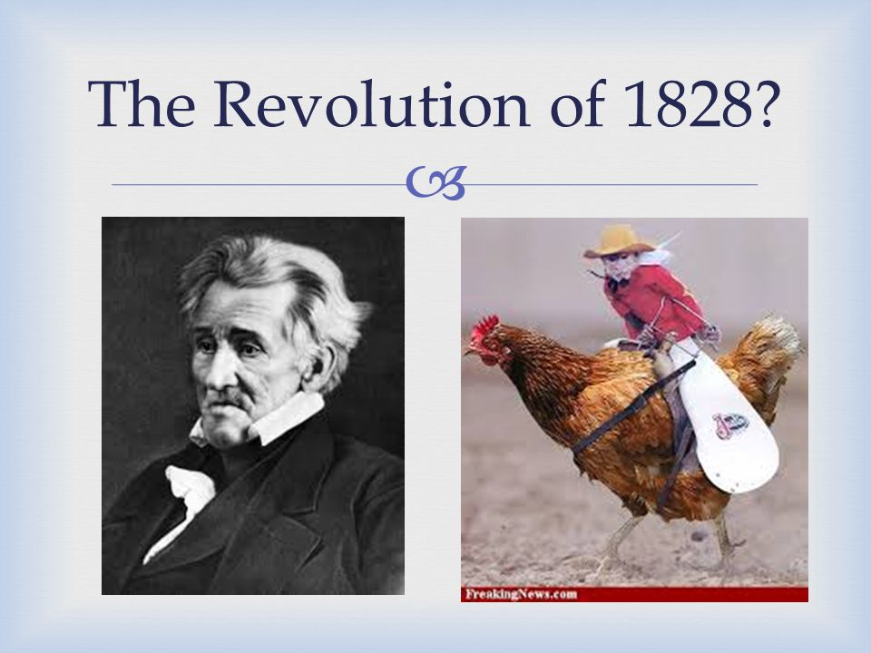  The Revolution of 1828?