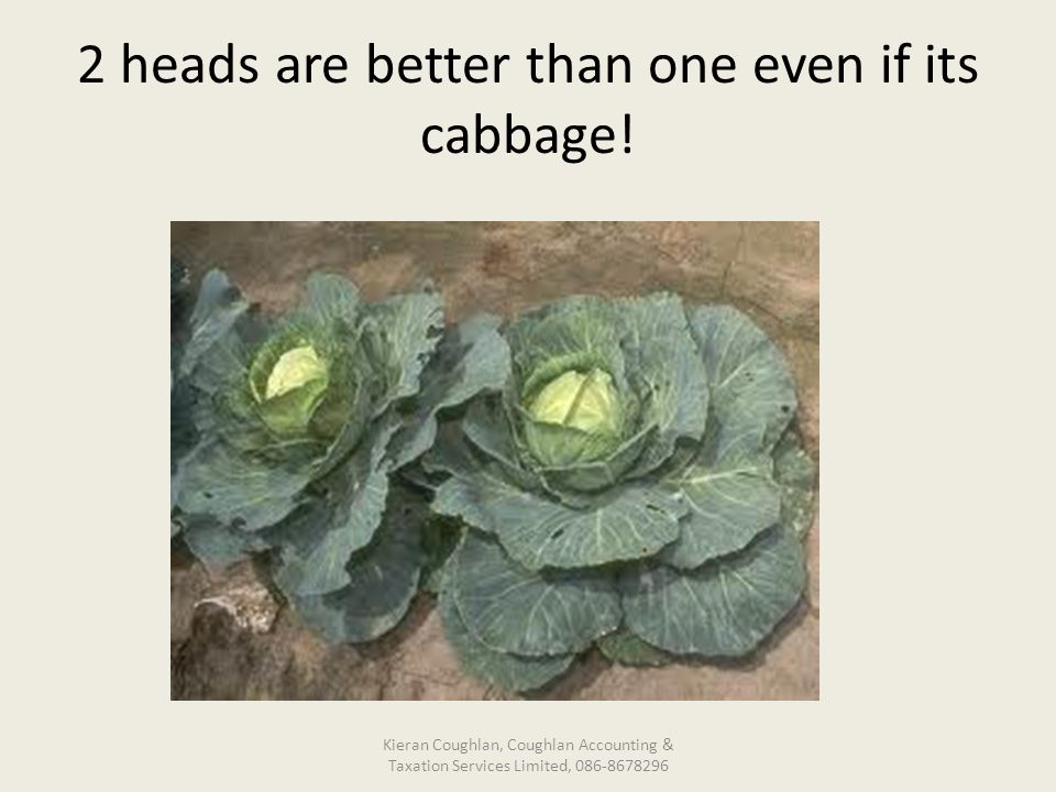 2 heads are better than one even if its cabbage.