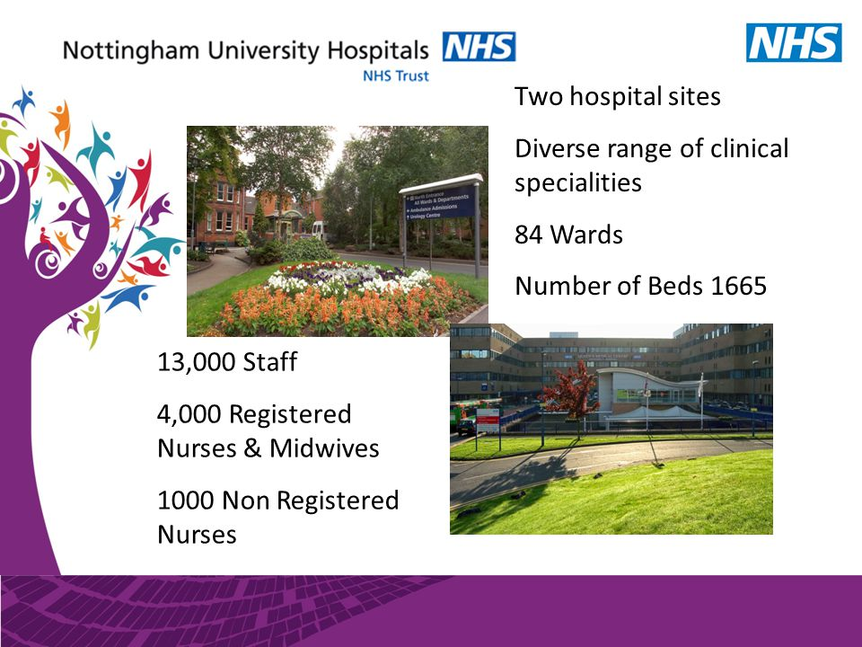 Two hospital sites Diverse range of clinical specialities 84 Wards Number of Beds 1665 13,000 Staff 4,000 Registered Nurses & Midwives 1000 Non Registered Nurses