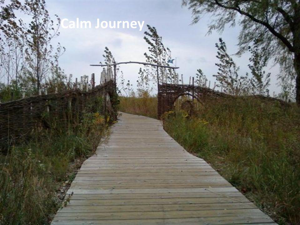 Calm Journey
