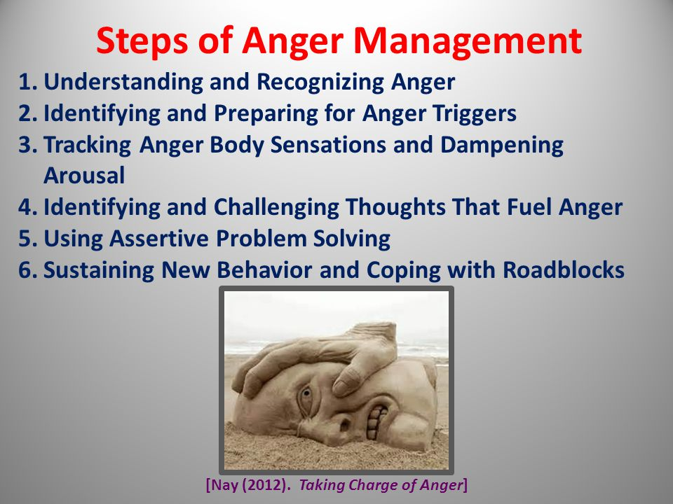 [Nay (2012). Taking Charge of Anger] Steps of Anger Management 1.Understanding and Recognizing Anger 2.Identifying and Preparing for Anger Triggers 3.