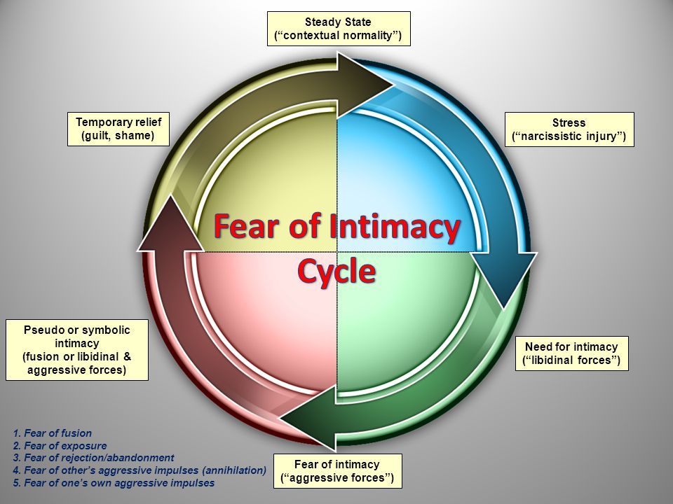 """Steady State (""""contextual normality"""") Stress (""""narcissistic injury"""") Need for intimacy (""""libidinal forces"""") Fear of intimacy (""""aggressive forces"""") Pse"""