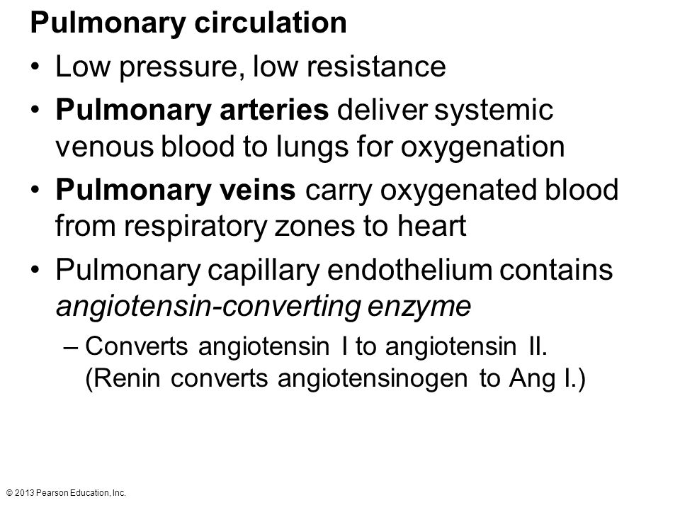 © 2013 Pearson Education, Inc. Pulmonary circulation Low pressure, low resistance Pulmonary arteries deliver systemic venous blood to lungs for oxygen