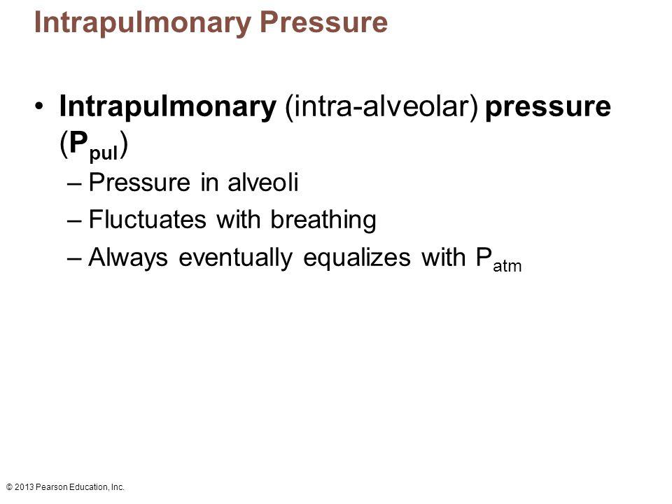 © 2013 Pearson Education, Inc. Intrapulmonary Pressure Intrapulmonary (intra-alveolar) pressure (P pul ) –Pressure in alveoli –Fluctuates with breathi