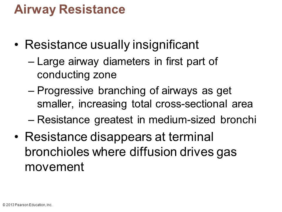 © 2013 Pearson Education, Inc. Airway Resistance Resistance usually insignificant –Large airway diameters in first part of conducting zone –Progressiv