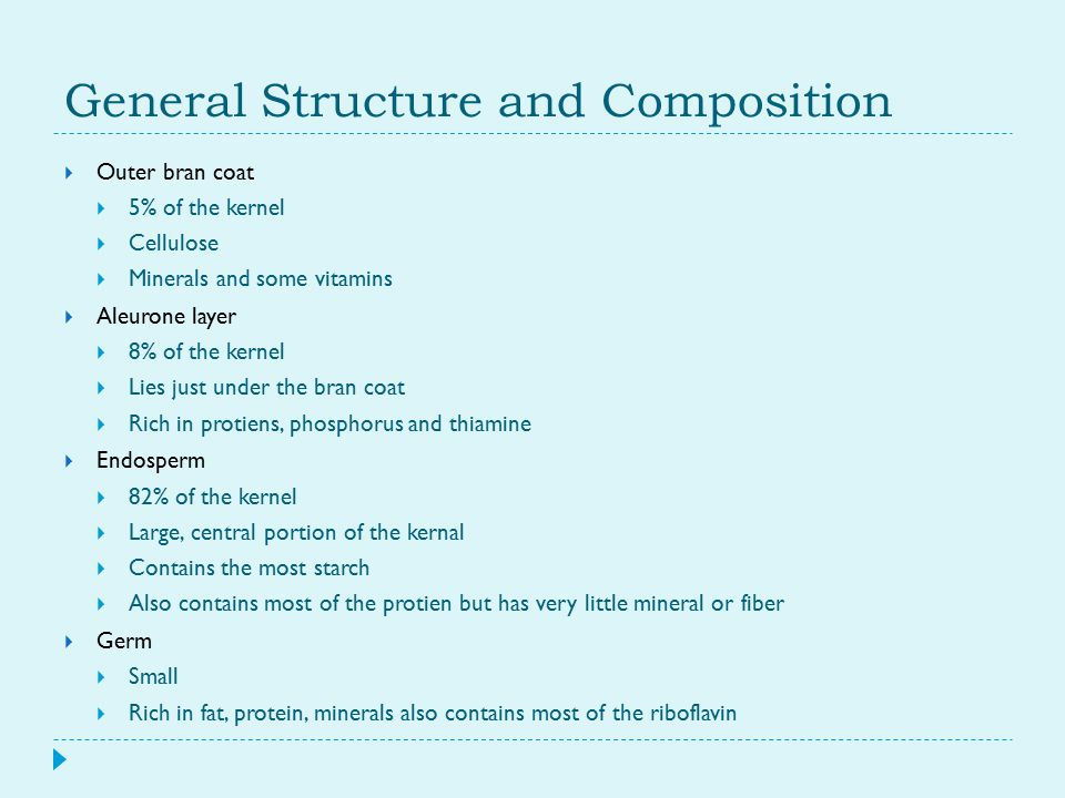 General Structure and Composition  Outer bran coat  5% of the kernel  Cellulose  Minerals and some vitamins  Aleurone layer  8% of the kernel 