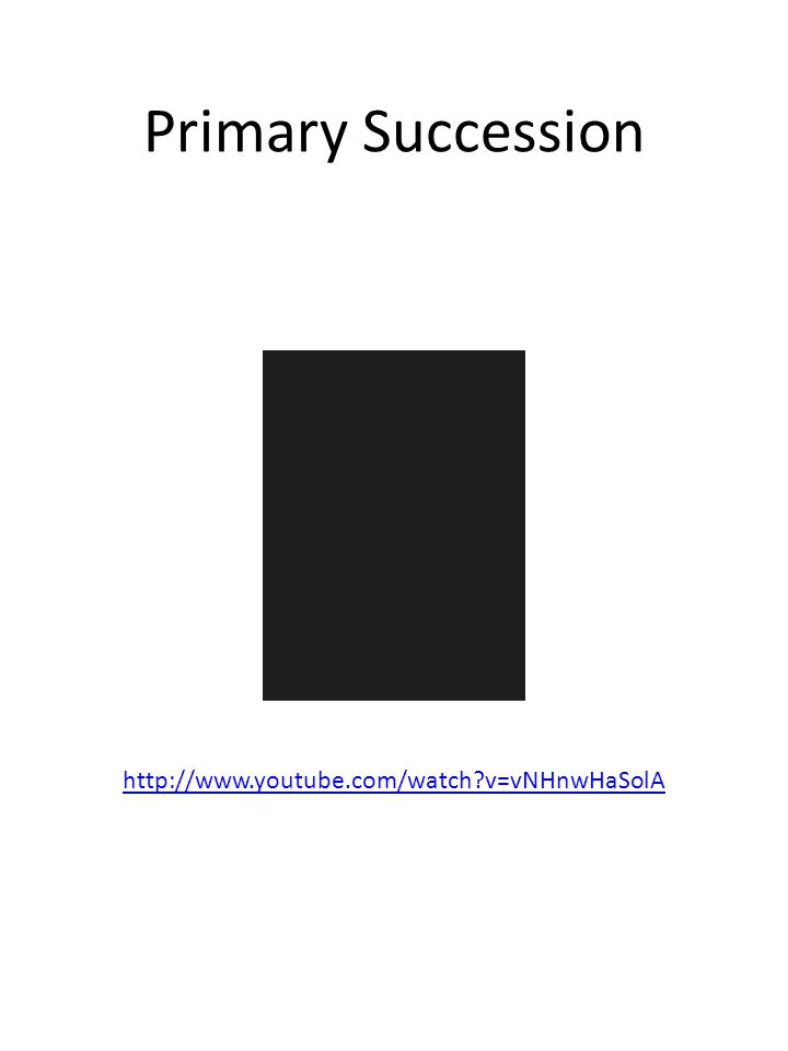 Primary Succession http://www.youtube.com/watch?v=vNHnwHaSolA