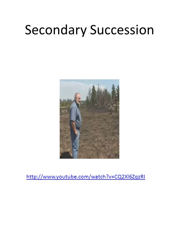 Secondary Succession http://www.youtube.com/watch?v=CQ2Xl6ZqzRI