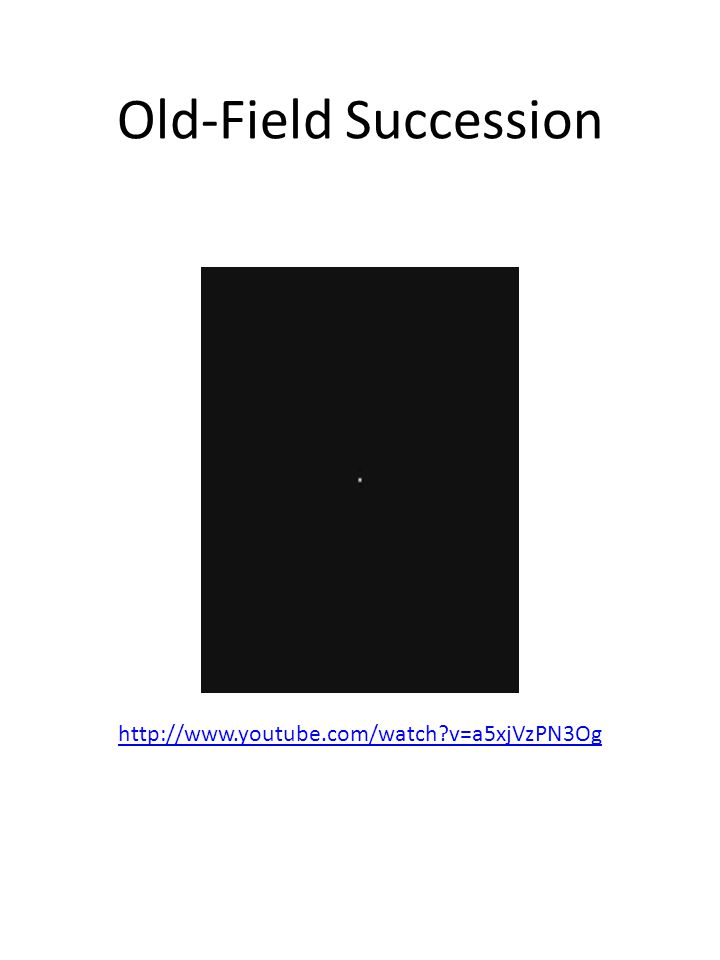 Old-Field Succession http://www.youtube.com/watch?v=a5xjVzPN3Og